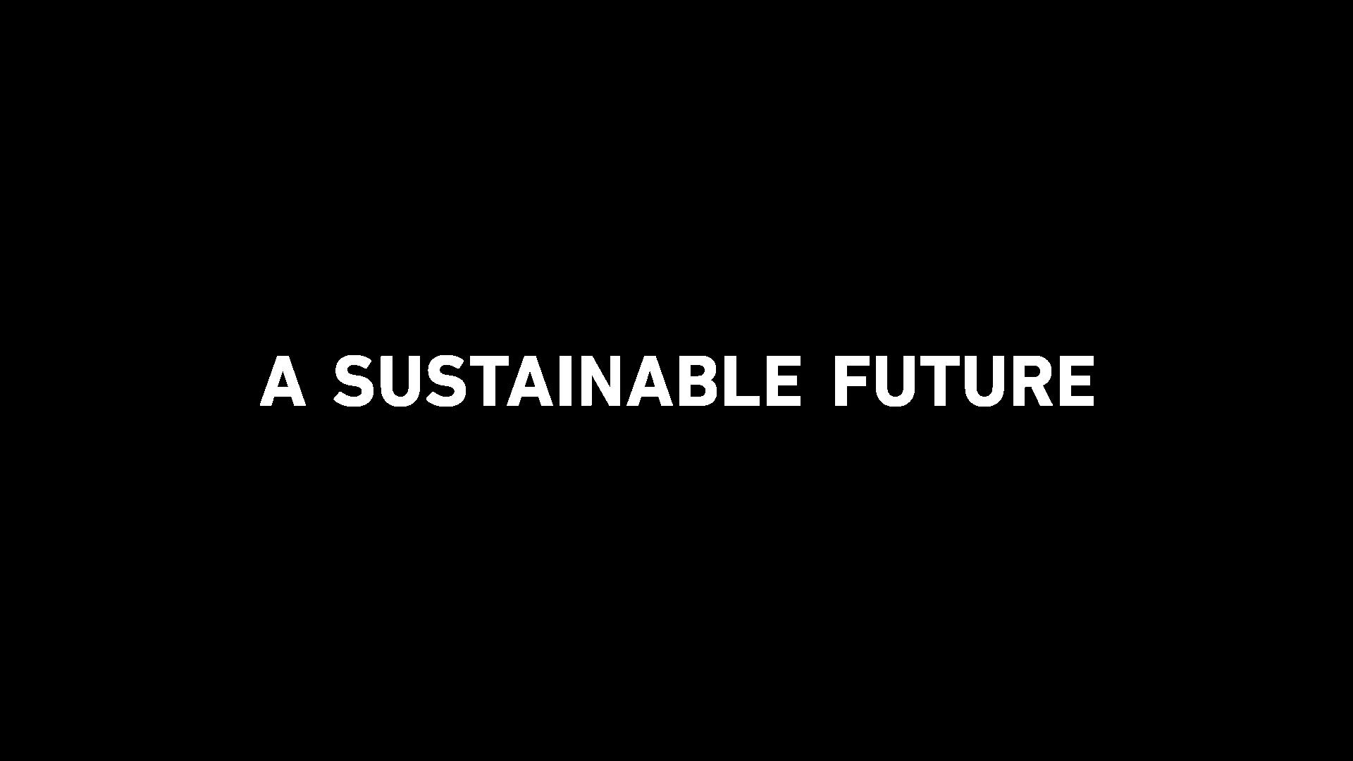 A SUSTANBLE FUTURE